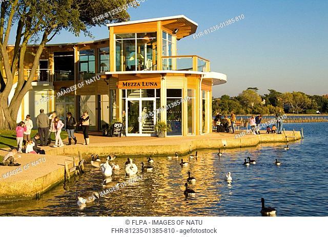 Restaurant and lake in autumn sunshine, families, geese and swans on water, Poole Park, Dorset, England, october