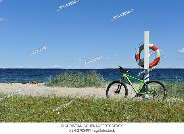 Moesgaard Beach, Aarhus, Jutland Peninsula, Denmark, Northern Europe