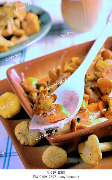 Fried golden chanterelles appetizing