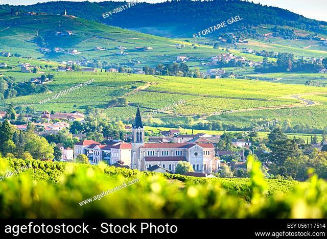 Paysage et vignobles du Beaujolais, Fleurie et Villié-Morgon, France