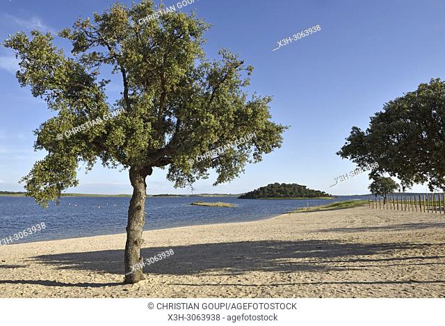 river beach of Monsaraz on the dam lake of Alqueva on the Guadiana River, Reguengos de Monsaraz, Alentejo region, Portugal, southwertern Europe