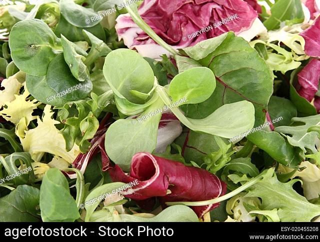 close up on salad