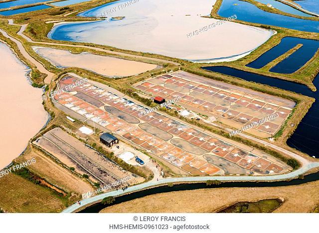 France, Vendee, L'Ile d'Olonne, the salt marshes (aerial view)