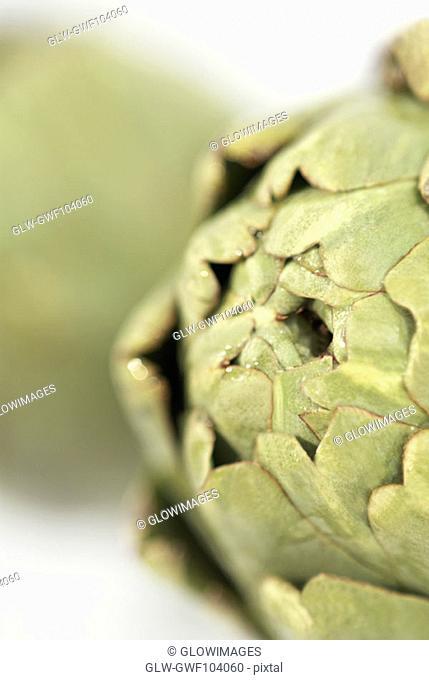 Close-up of an artichoke (Cynara scolymus)