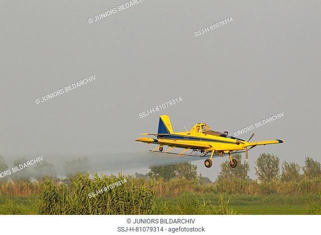 Crop duster plane flying low while spraying an anti mosquito substance onto the rice fields (Oryza sativa) and the surrounding wetlands