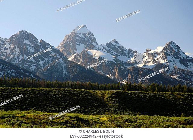The Grand Teton Range, seen from Moose-Wilson Road, Grand Teton National Park, Teton County, Wyoming, USA