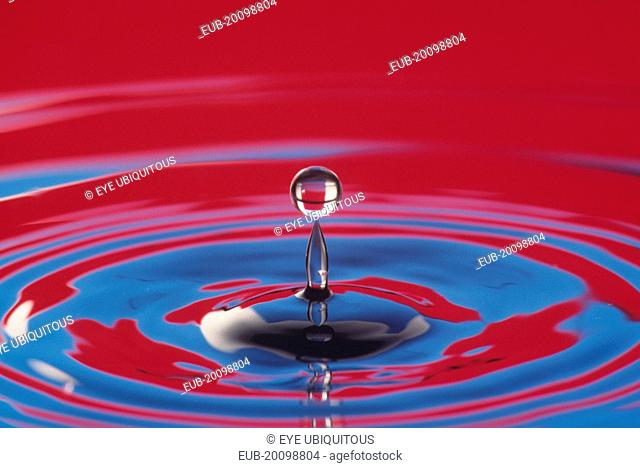 Water drop at moment of suspension above splash and surrounding circular ripples on water surface reflecting red and blue colour