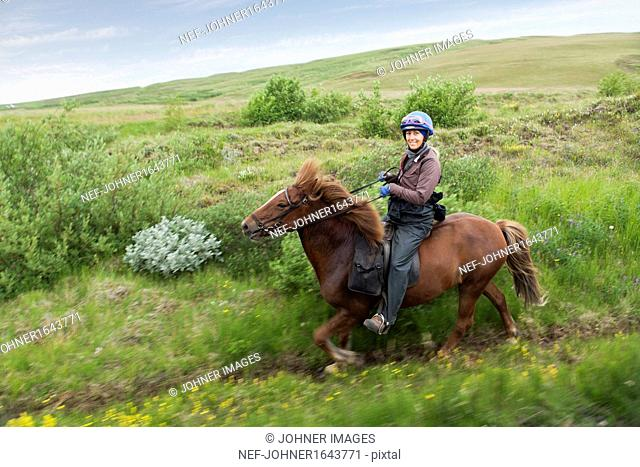 Woman riding horse in meadow