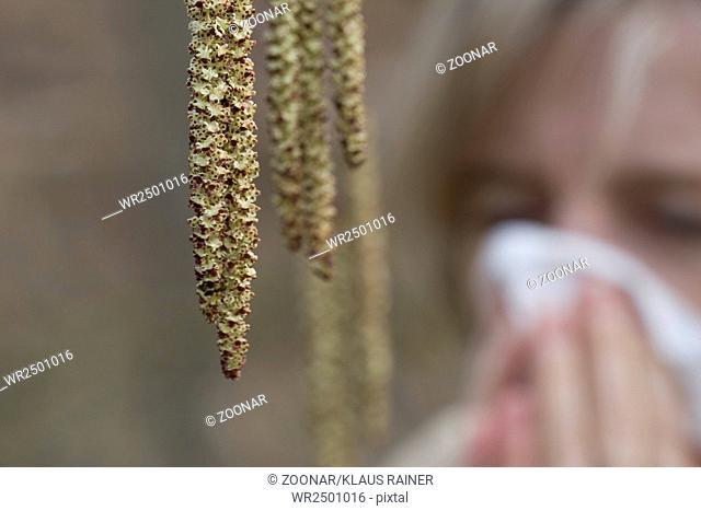 Heuschnupfen   hay fever