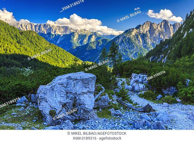 Julian Alps from Vrsic Pass. Triglav National Park. Gorizia region. Slovenia, Europe
