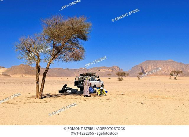 group of touareg resting under a acacia tree, Tassili n' Ajjer National Park, Unesco World Heritage Site, Wilaya Illizi, Algeria, Sahara, North Africa