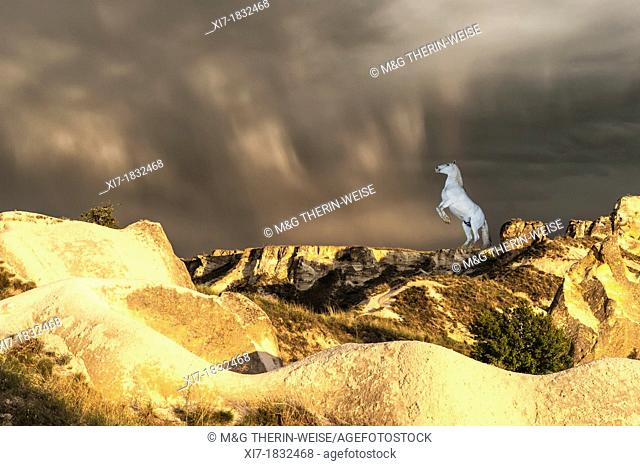 Rock formation and white horse, Uchisar, Göreme National Park, Cappadocia, Turkey