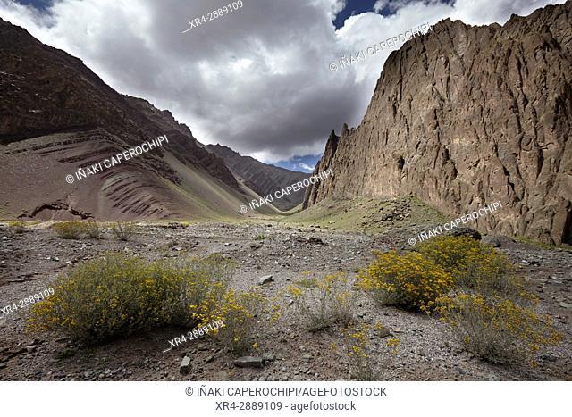 Mountain erosion, Manali - Leh Highway, Lato, Ladakh, India