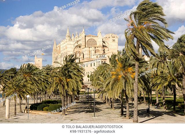 Mallorca Cathedral, XIII Century, Historic-Artistic, Palma, Mallorca, Balearic Islands, Spain, Europe