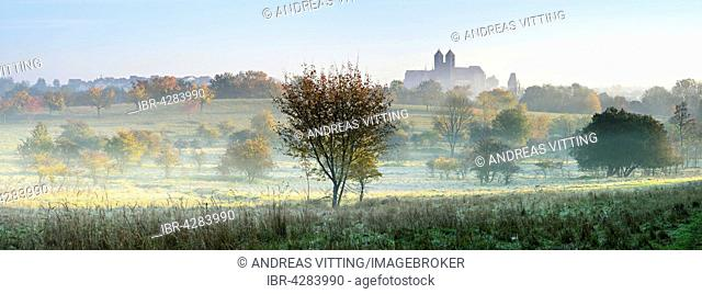 Autumn landscape, castle hill with collegiate church of St. Servatius, fog, UNESCO, in Quedlinburg, Saxony-Anhalt, Germany