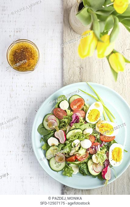 Spring vegetable salad with cooked egg