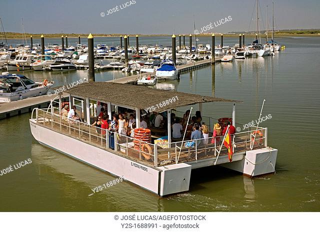 Marina and ferry, El Rompido, Cartaya, Huelva-province, Spain