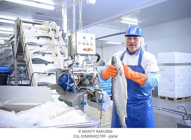 Worker examining fish in factory