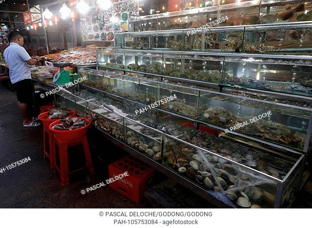 Seafood restaurant in Duong Dong town. Lobsters, prawns and seashells.? Phu Quoc. Vietnam.   usage worldwide. - Duong Dong/Phu Quoc/Vietnam