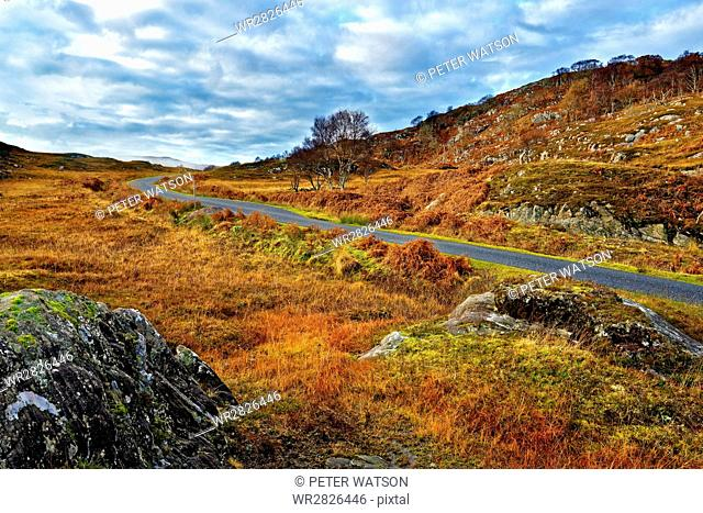 A winter view of a remote winding road through the colorful moors and hills of Ardnamurchan peninsula, Scottish Highlands, Scotland, United Kingdom, Europe