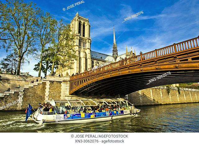 Touris boat, Pont au Double is a bridge, Our Lady of Paris, Notre Dame Cathedral, Île de la Cité, River Seine, Paris, France, Europe