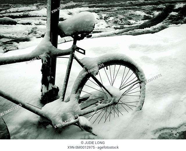 Snow Covered Bicycle Parked and Locked to a Pole on Lexington Avenue, New York City