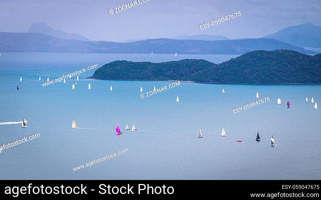 View on sailing regatta at Whitsunday Islands from a mountain near Airlie beach, Queensland, Australia