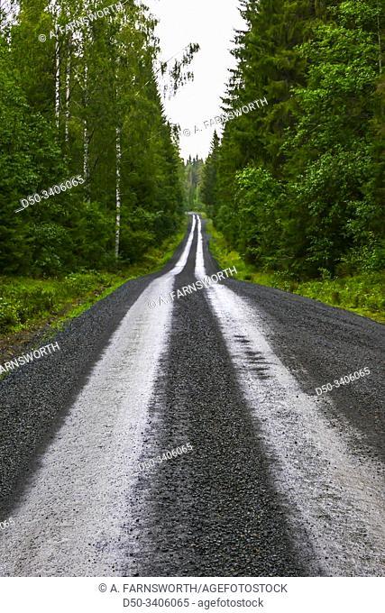 Harnosand, Sweden A wet forest road