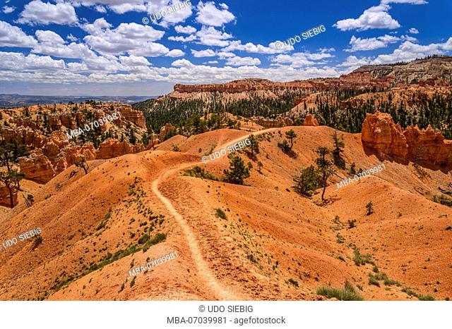 Utah, Utah, Garfield County, Bryce Canyon National Park, Amphitheater, View from the Queens Garden Trail