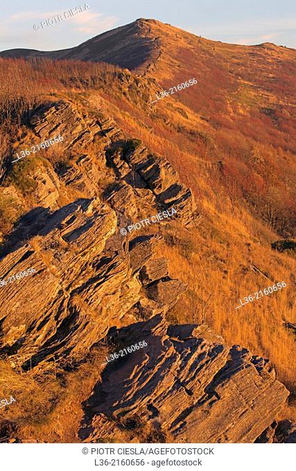 Bukowe Berdo Range. Bieszczady Mountains. Poland. Autumn