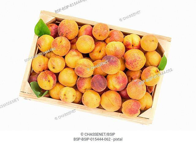 Top view wood box with apricots on a white background