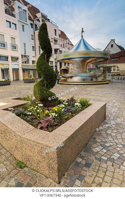 Flowerbed and carousel in Colmar square, Colmar, Haut-Rhin department, Grand Est region, Alsace, France