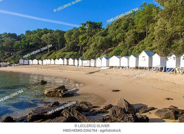 France, Vendee, Ile de Noirmoutier, Bois de la Chaise, Beach Anse Rouge and beach huts