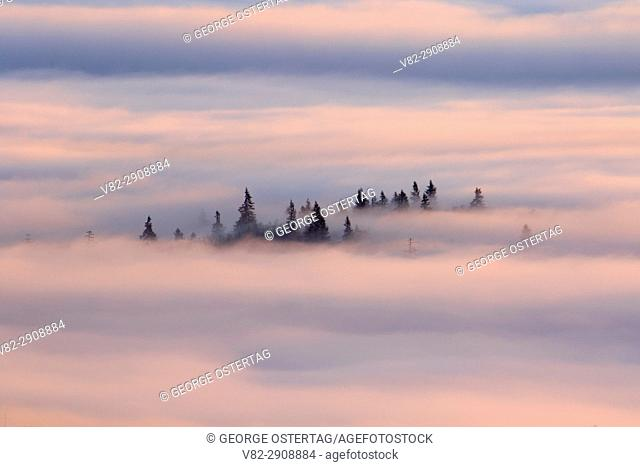 Willamette Valley fog from summit, Spencer Butte Park, Eugene, Oregon