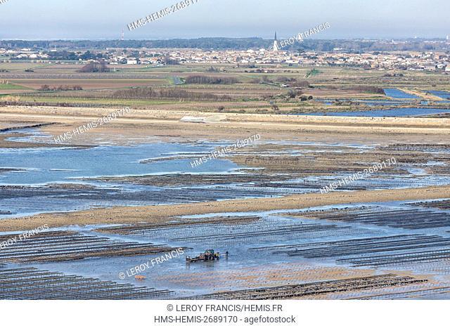 France, Charente Maritime, Re island, Ars en Re, labelled Les Plus Beaux Villages de France (The Most Beautiful Villages of France