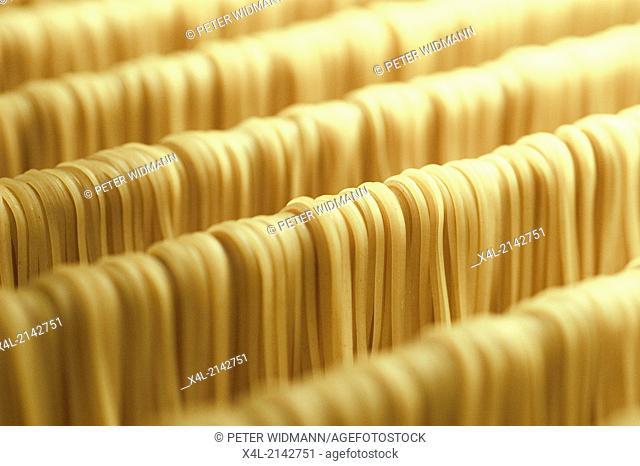 noodles homemade organic noodles
