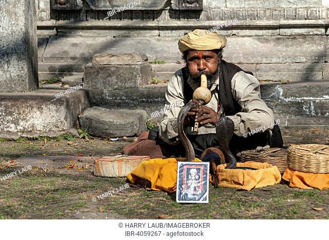 Snake charmer, Pashupatinath, Kathmandu, Nepal