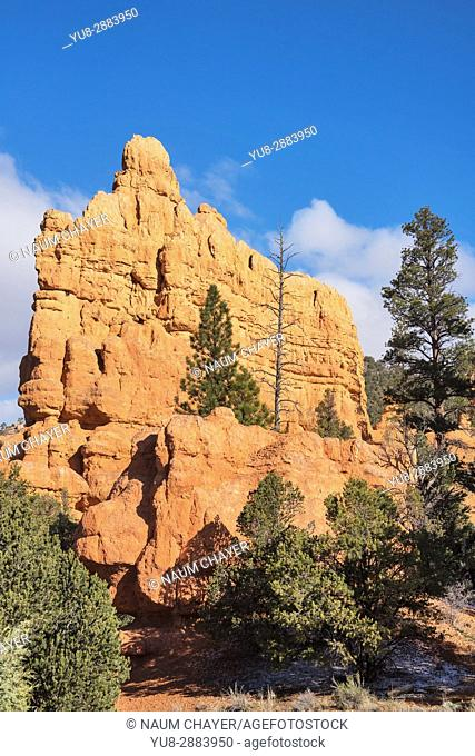 Beautiful landscape with red sandstone formations, Red Canyon, Utah, USA
