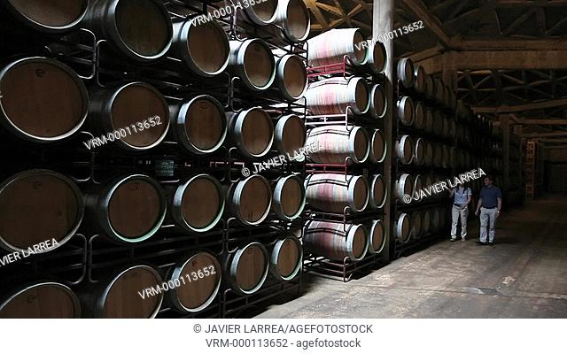 Couple visiting winery, Barrel cellar, Bodegas Olarra, Logroño, La Rioja, Spain