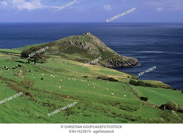 Torr Head, coast of Antrim, around Cushendun, Northern Ireland, United Kingdom, Western Europe