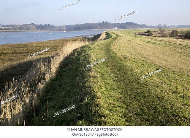 Coastal footpath Sea wall flood defence bank of River Deben, near Kirton Creek, Suffolk, England, UK
