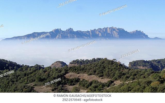 Montserrat Mountains seen from Serra de l'Obac. Catalonia, Spain