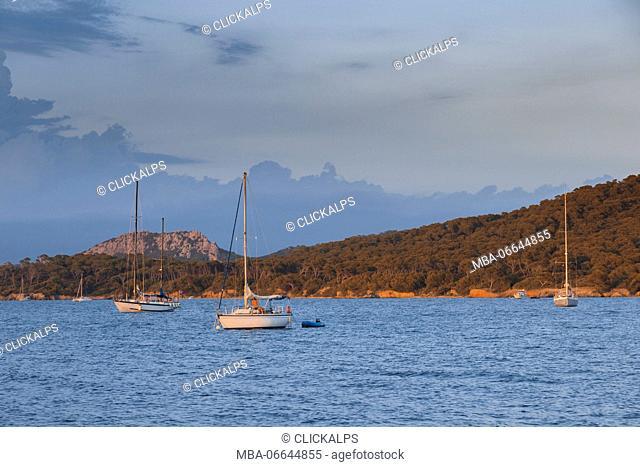 Mooring sailboats during the sunset (Ile de Porquerolles, Hyeres, Toulon, Var department, Provence-Alpes-Cote d'Azur region, France, Europe)