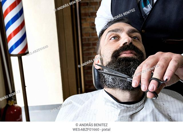 Barber cutting man's beard