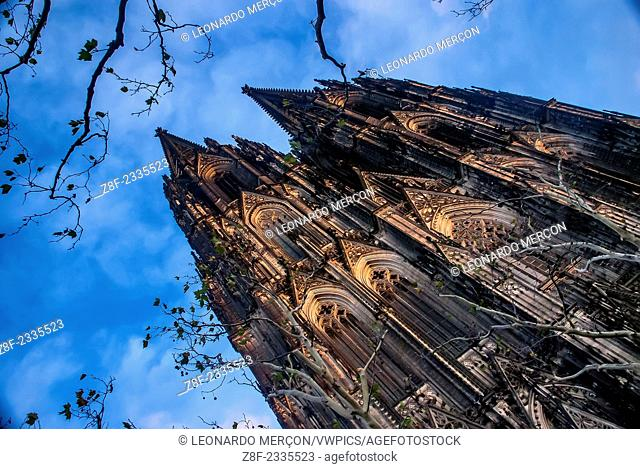 The Cologne Cathedral (Kölner Dom) from below