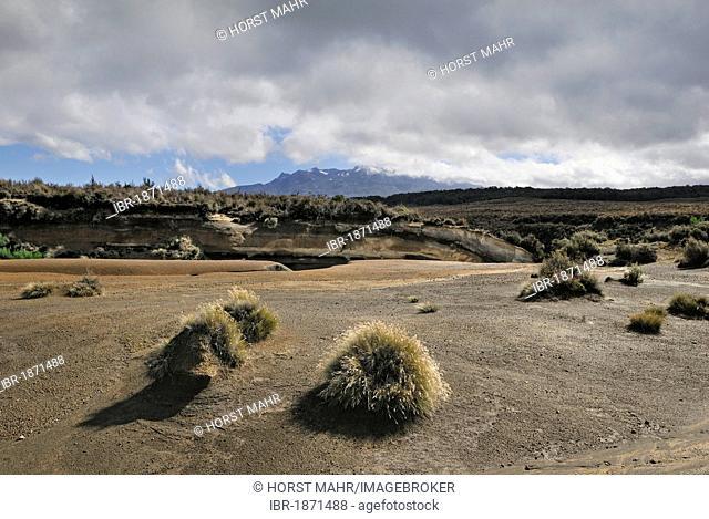 Volcanic landscape at Mount Ruapehu, Tongariro National Park, UNESCO World Heritage Site, Turangi, North Island, New Zealand
