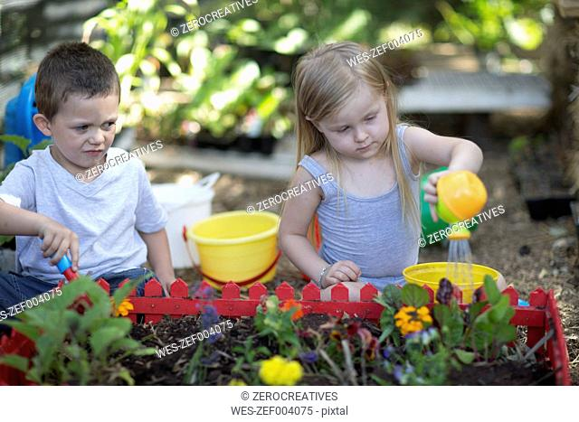 Little boy and girl gardening and watering plants