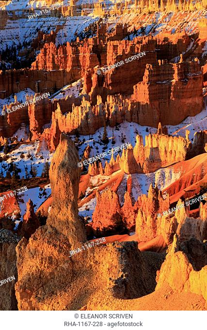 Hoodoos and snow lit by strong dawn light, Queen's Garden Trail at Sunrise Point, Bryce Canyon National Park, Utah, United States of America, North America
