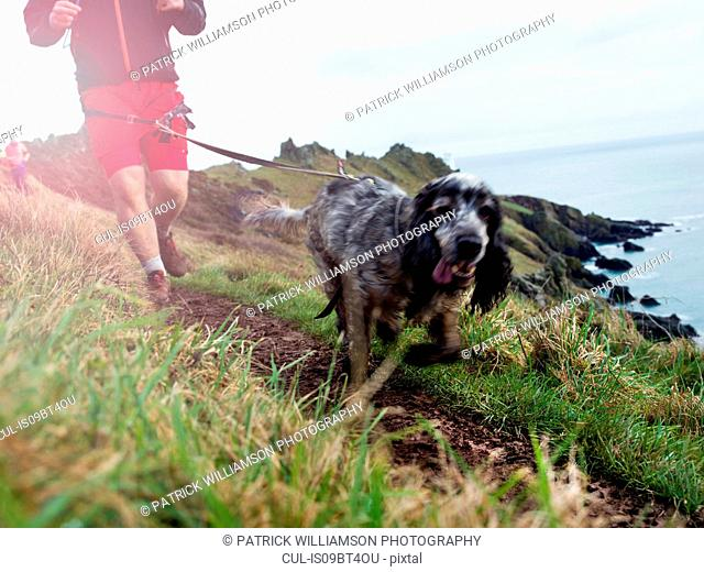 Man running with dog on hands-free leash by seaside