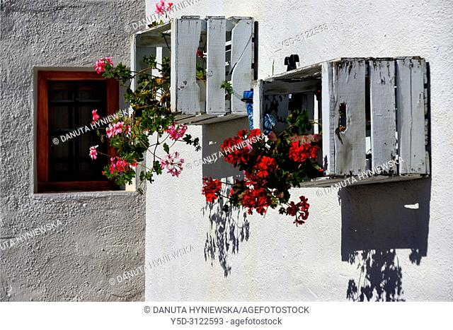 traditional wall decoration with flowers in pots, Galera, municipality Huéscar, province of Granada, Andalusia, Spain, Europe